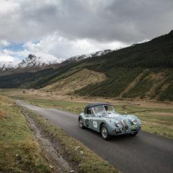 Jaguar Mini Miglia 2015