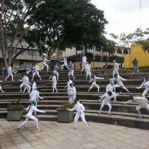 fencingmob2