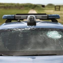 seat-leon-polizia-e-carabinieri (2)
