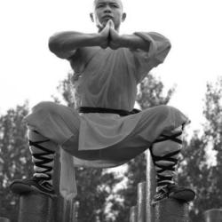 monaco shaolin2