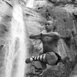 monaco shaolin4