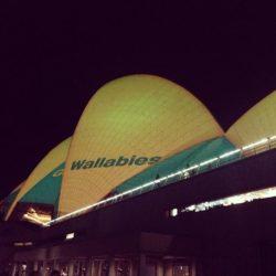 sydney opera house wallabies