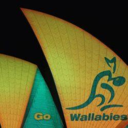 sydney opera house wallabies1