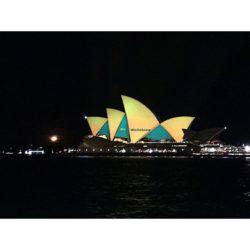 sydney opera house wallabies4