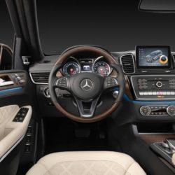 Mercedes GLS (22)