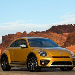 Volkswagen Beetle Dune (12)