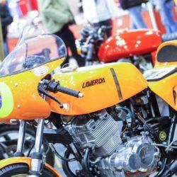 Motor Bike Expo  (15)