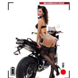 calendario barracuda 2016 (6)