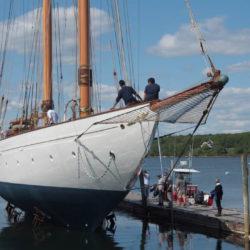 imbarcazioni asolare