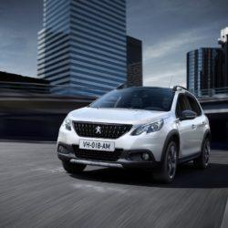 Peugeot 2008 (5)