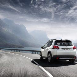 Peugeot 2008 (9)