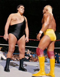 Hogan vs Andre face to face