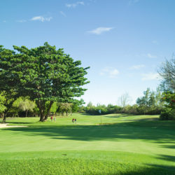 belle-mare-plage-legend-golf-course-10