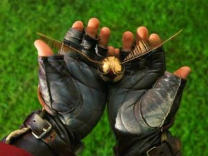 quidditch-buscador