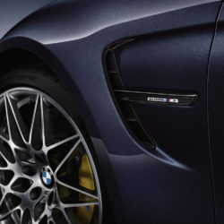 Bmw  M3 30 Years M3 (7)