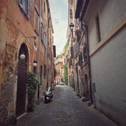 berdych roma