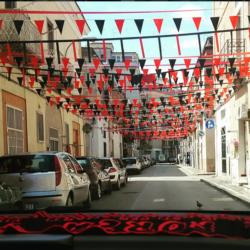 Foggia Pisa Coreografie (10)