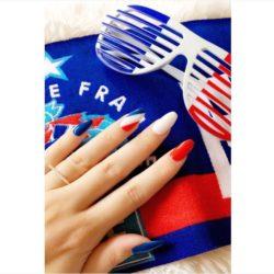 tifosi francia euro 2016 4