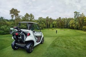 Mercedes Garia Golf Car (7)