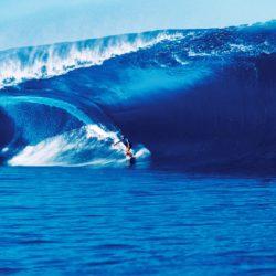 Surf Expo Citroen (8)