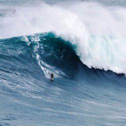 Surf Expo Citroen (9)