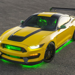 ford-mustang-ole-yeller_2