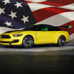 ford-mustang-ole-yeller_26