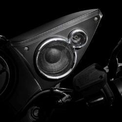 Moto Guzzi MGX-21  (20)