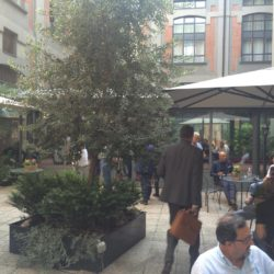 Calciomercato Hotel