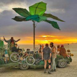 Burning Man (21)