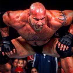 Bill Goldberg (11)