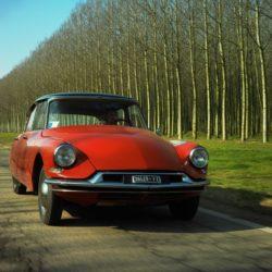 DS Automobilies (11)
