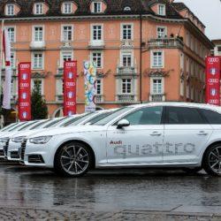 Fisi Audi  (11)