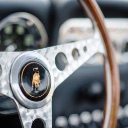 Lamborghini 350 GT  (14)