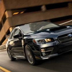 Subaru WRX STI 2017,  (4)