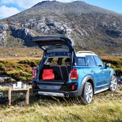 Mini Countryman (6)