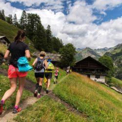 Monte Rosa Walser Trail  (2)