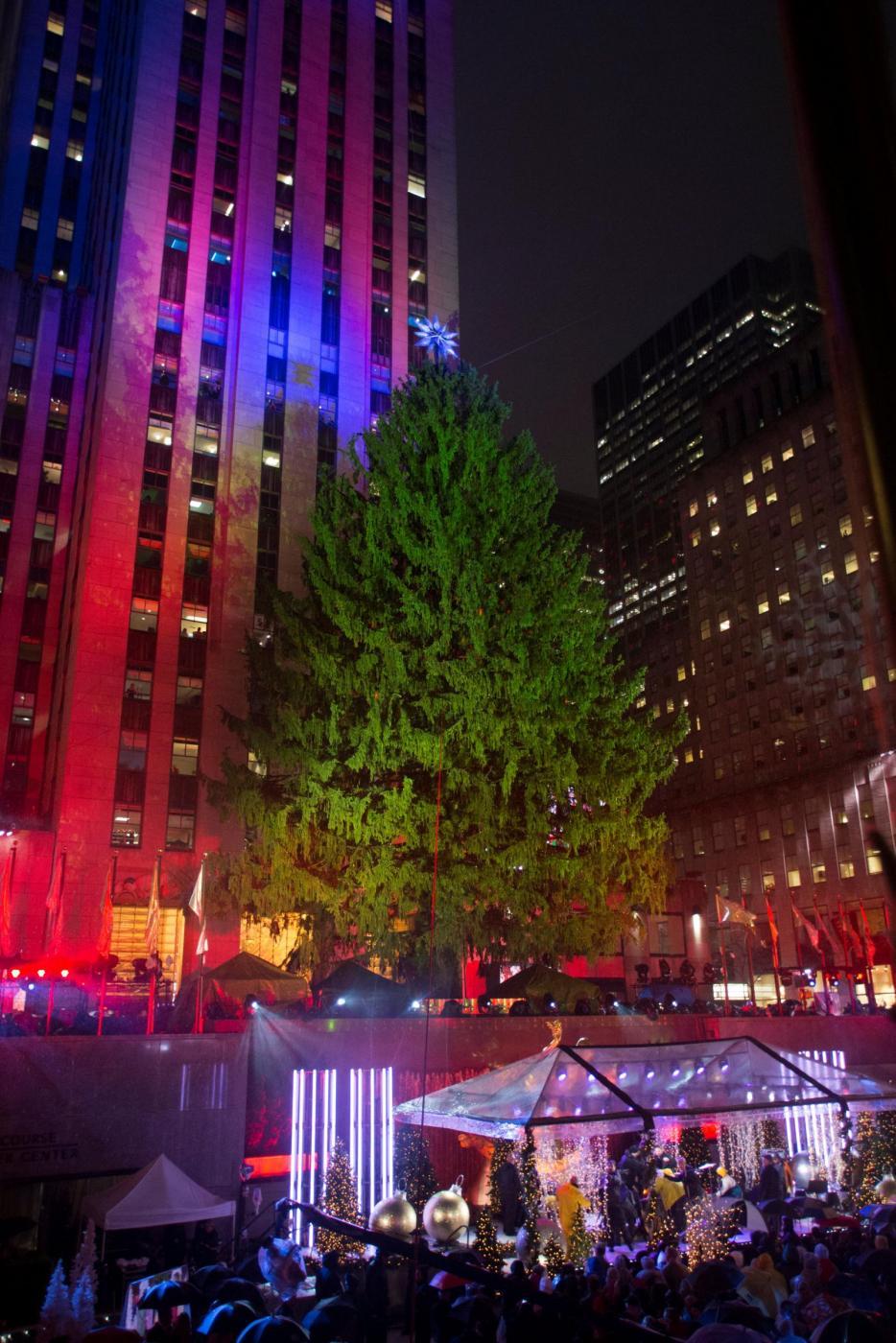 Albero Di Natale New York.New York L Accensione Dell Albero Di Natale A Times Square