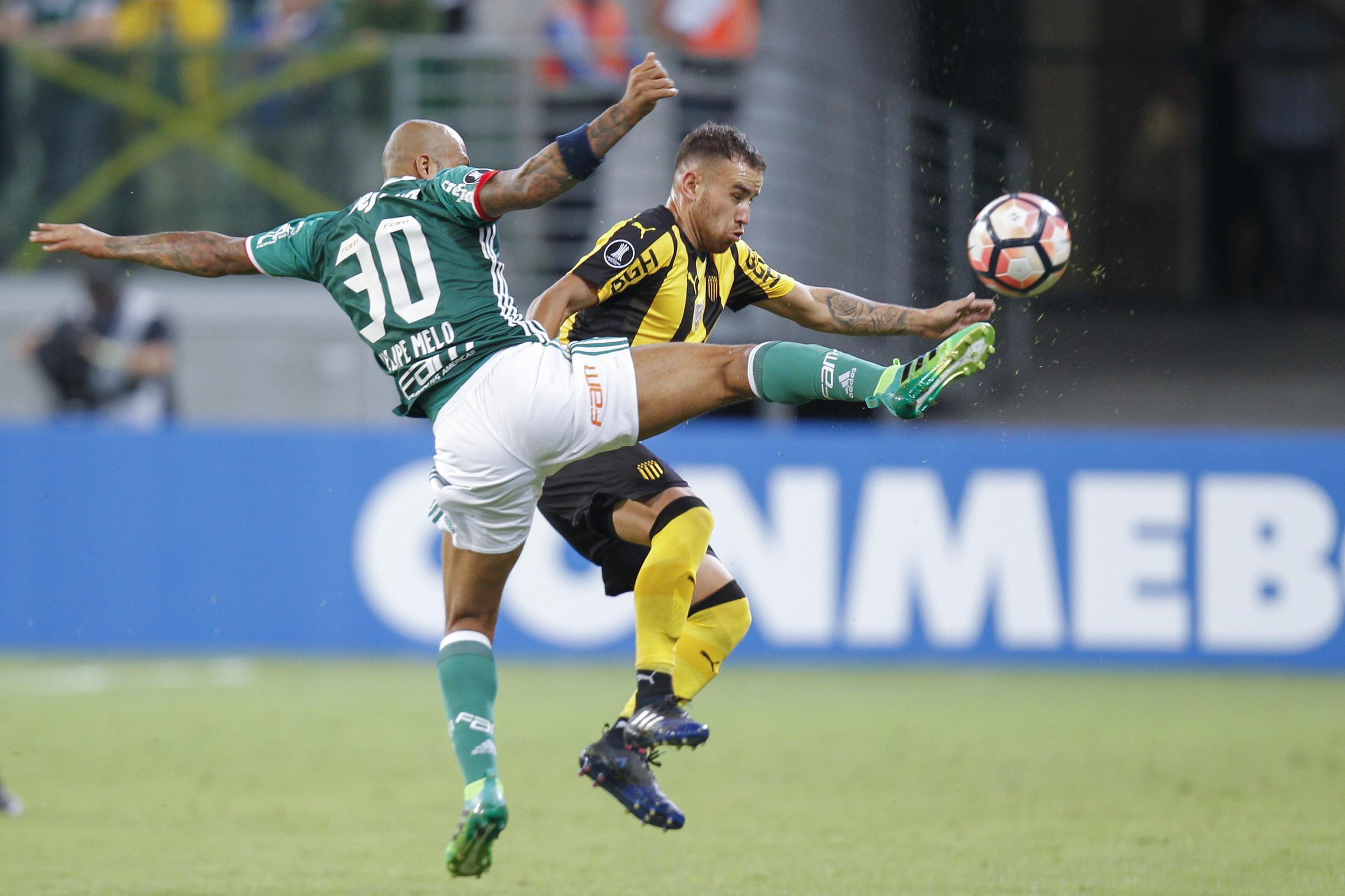 Palmeiras: Sei turni di squalifica a Melo per pugni all'avversario