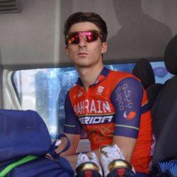 Niccolò Bonifazio