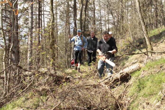 Quart Trail des Alpages