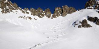 Sci Alpinismo Adamello Ski Raid