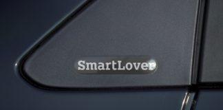 smart lover