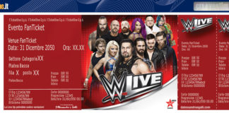 WWE Torino match