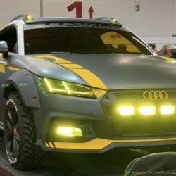 Audi tt safari