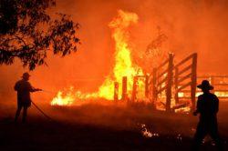 Rally – Paura in Australia: incendi devastanti, gara annulla